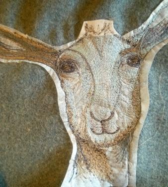 goat back
