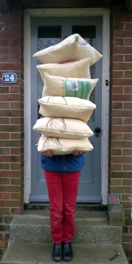 chrismas cushions